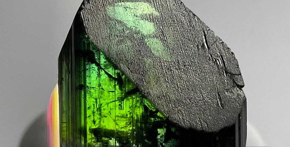 Turmalin – Cruzeiro Mine, Minas Gerais, Brasilien