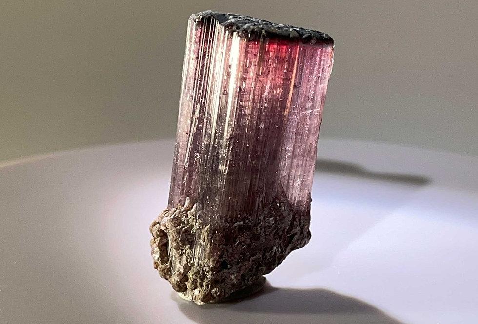 Turmalin – Himalaya Mine, San Diego Co., CA, USA