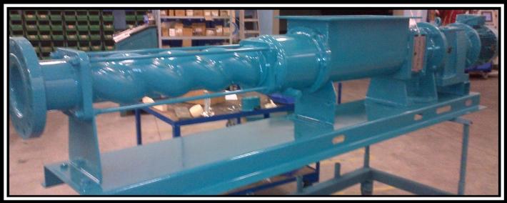 BG Syclone pump