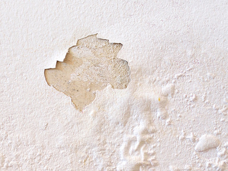 How to Avoid Common Paint Defects