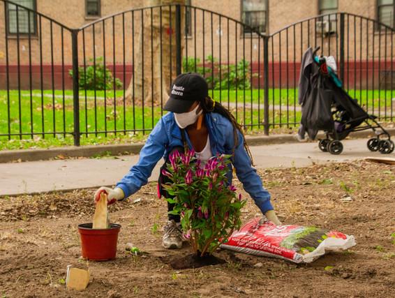 Queensbridge_Sacred_Garden_34.jpg