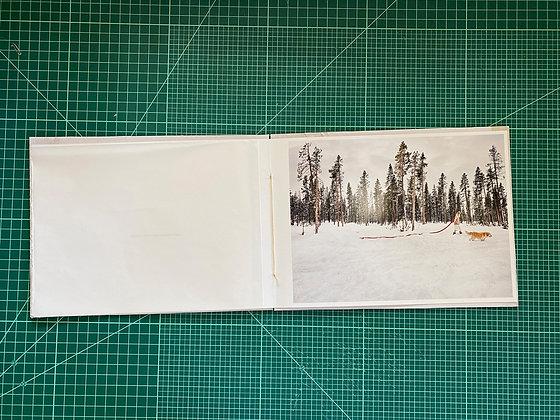0217.1609 Deschutes Forest Signature Print