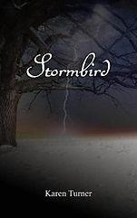 stormbird.jpeg