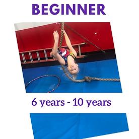Rec beginner.png