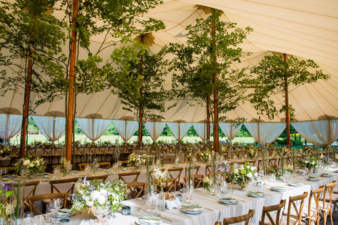 Dreamlike Tented Backyard Wedding with Trees
