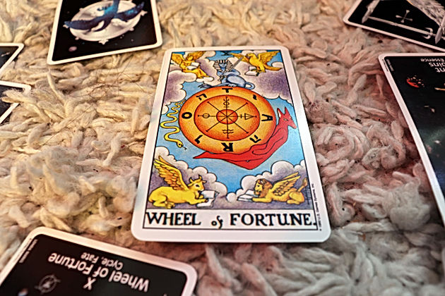 Star (Em)Powered: Astro and Tarot for July 14-21   College Student
