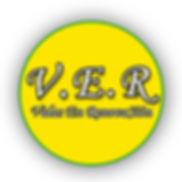 VERlogotipo2.jpg