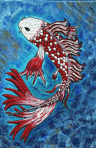 Poisson Rouge et Blanc