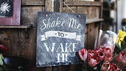 (Aug30)Shake-Me-To-Wake-Me_TITLE_slide (