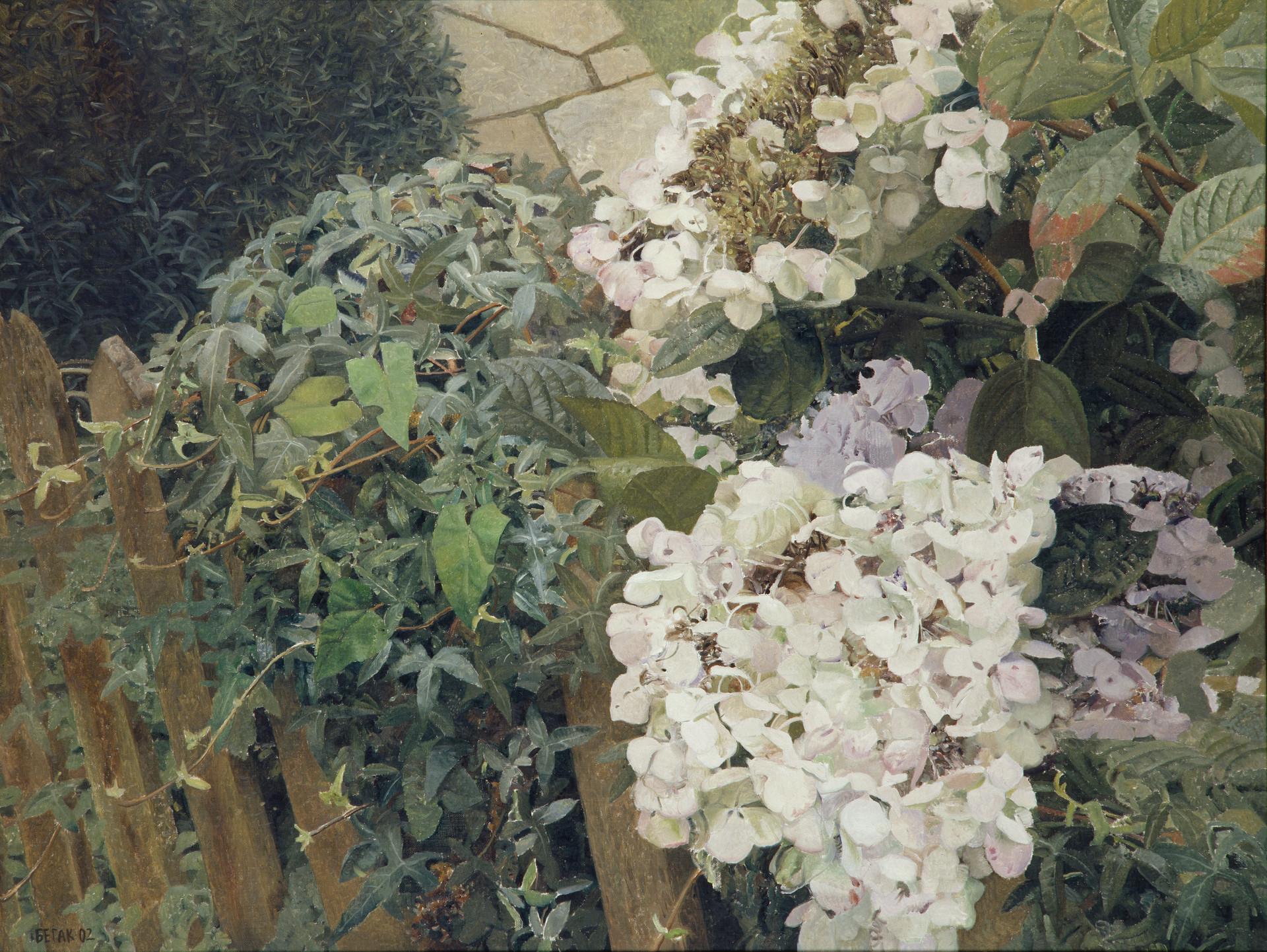 Garden in Humstead