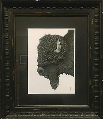 Buffalo, Juried Art