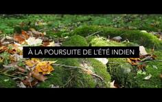 """Vidéo 2 : """"À la poursuite de l'été indien"""""""