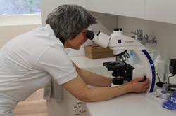 Dr. med. Sandra Bloch, Frauenärztin