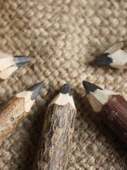Twiggy twig pencils