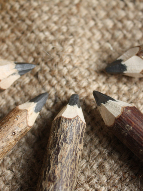 Twiggy twig pencils