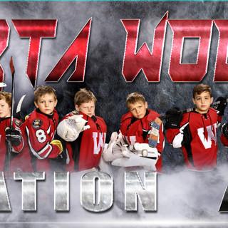 Hockey Banner 4.jpg