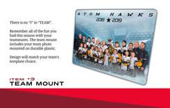 Team Mount.jpg