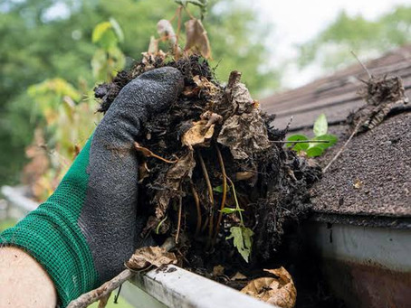 Best Way To Clean Your Gutters DIY