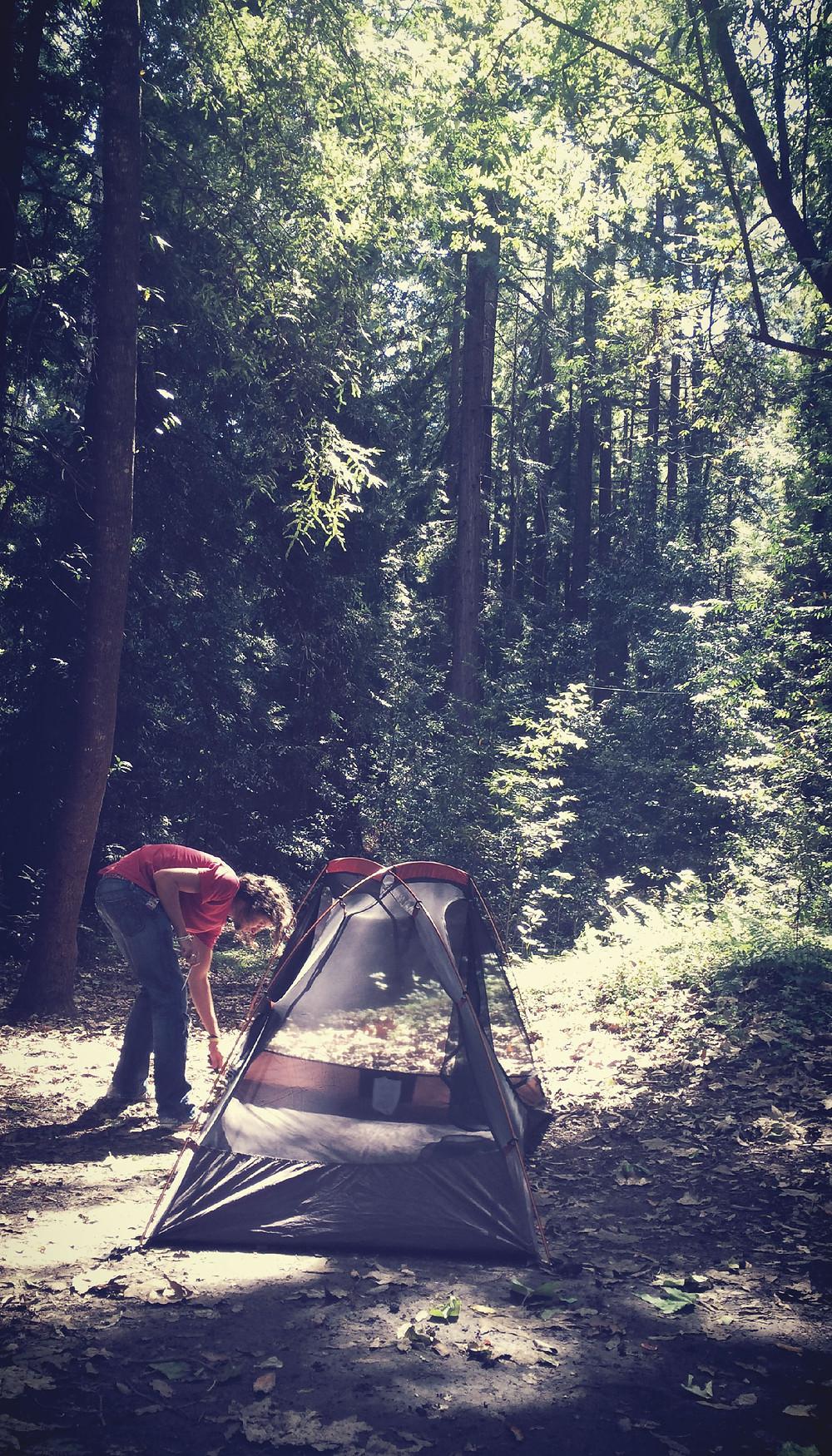 wander 03-07.jpg