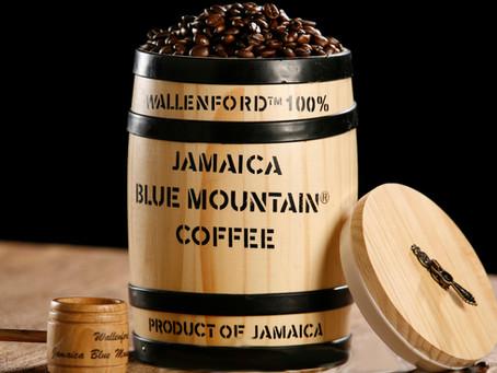 淺談咖啡: 藍山貓屎VS.精品咖啡