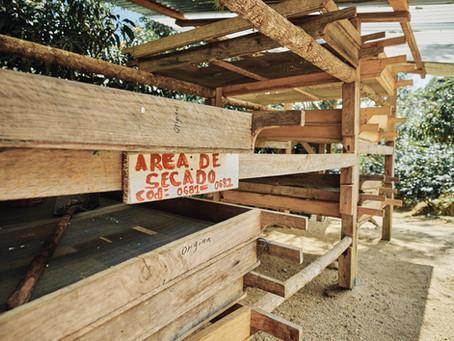 回歸原點 - 再訪尼加拉瓜