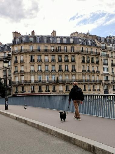 Pont Saint-Louis, Paris
