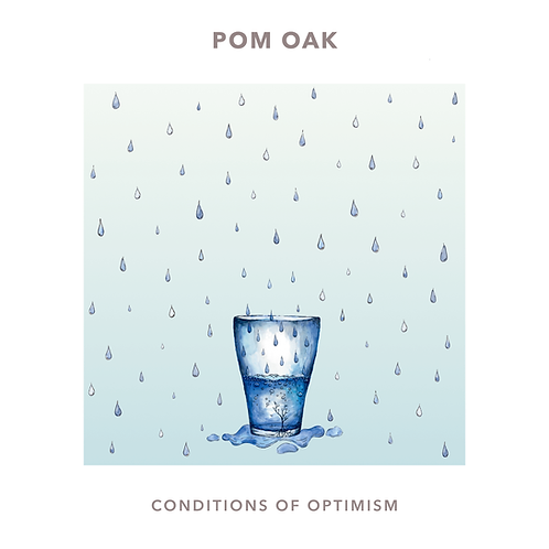 Conditions of Optimism (physical copy)