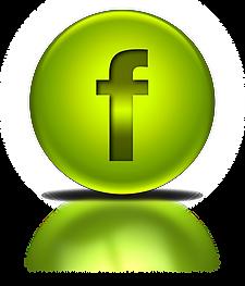 100067-green-metallic-orb-icon-social-me