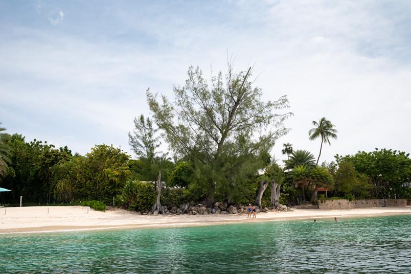 Cayman-0560.jpg