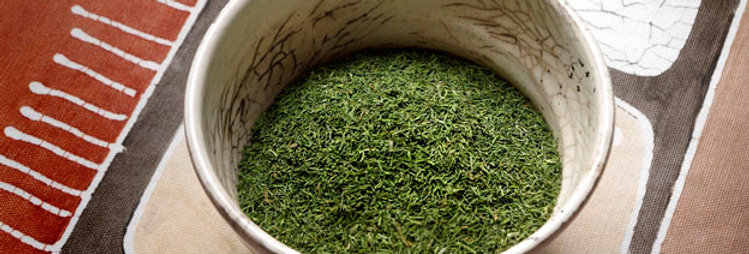 Dill Weed, Wholesale
