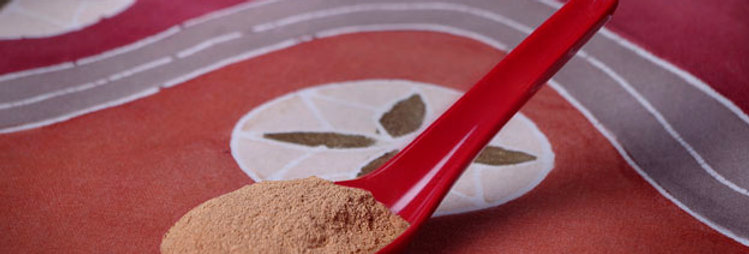 Cinnamon, Ceylon, Wholesale