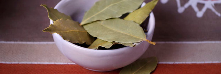 Bay Leaves, whole (per 12 leaves)