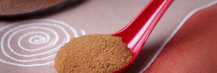 Cinnamon, Cassia, Wholesale