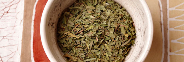 Tarragon, Wholesale