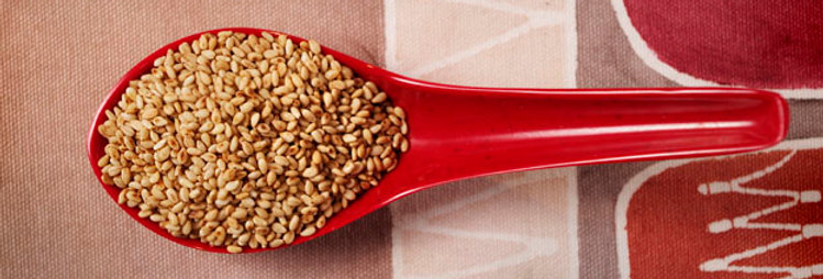 Sesame Seeds, Toasted, Wholesale