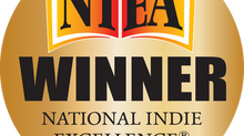 The Silent Tide Experience – Winning the 2014 National Indie Excellence Award