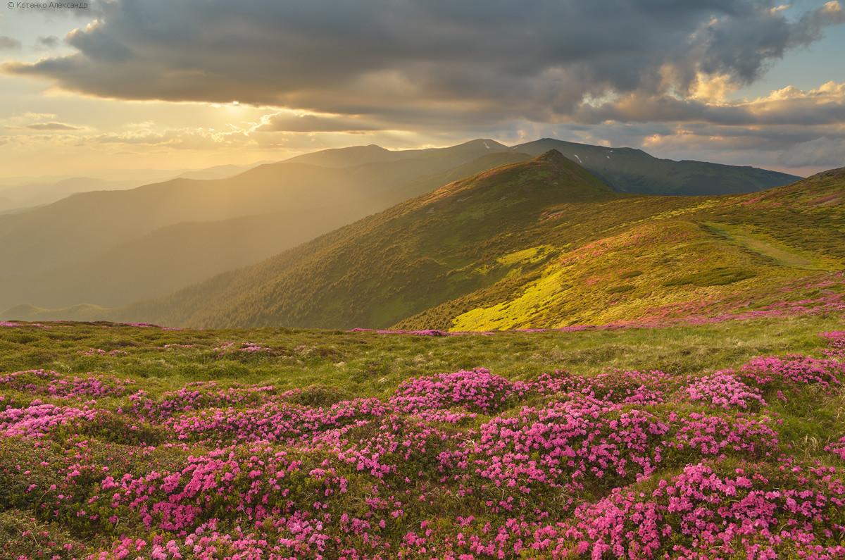 Carpathians23.jpg