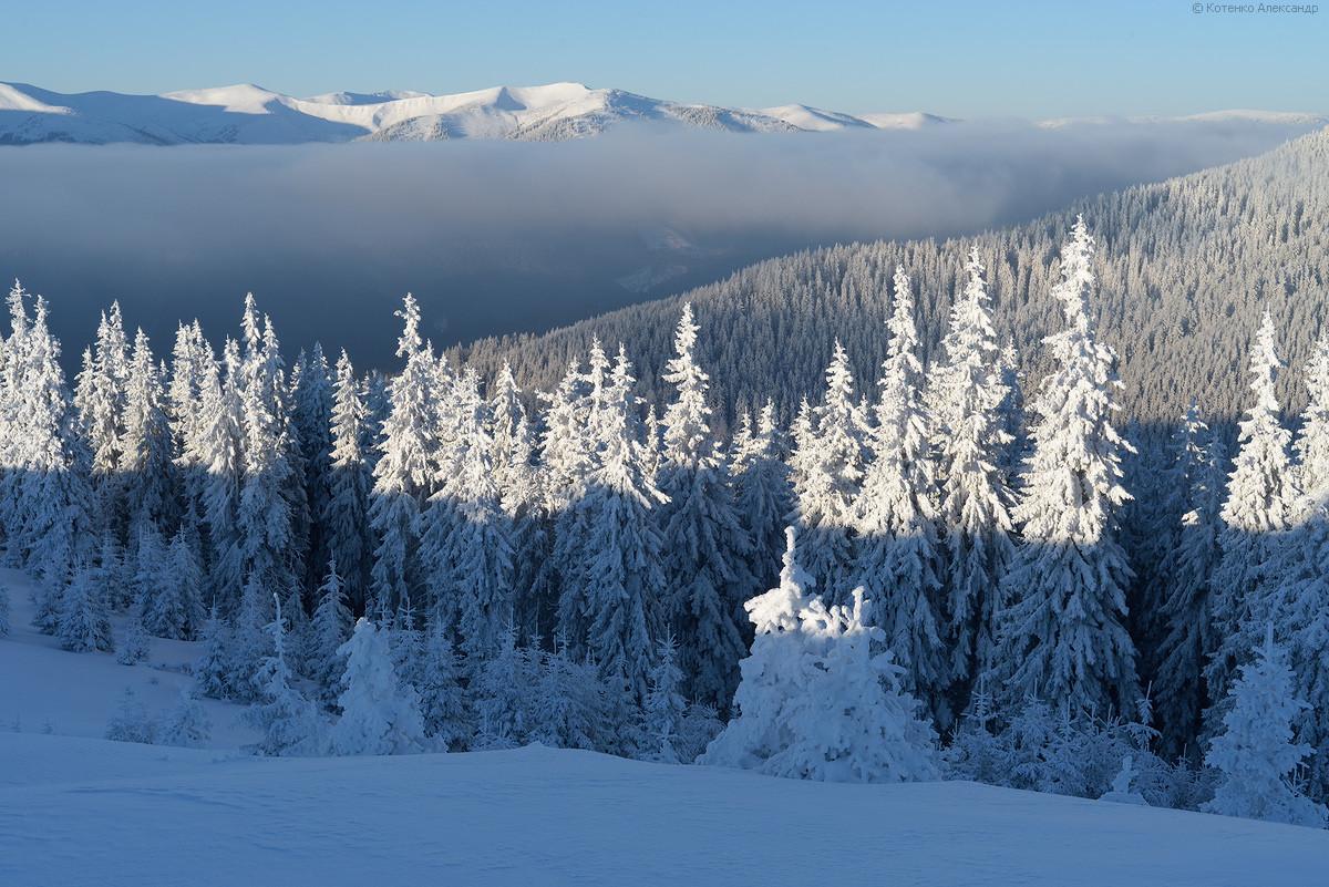 Carpathians61.jpg