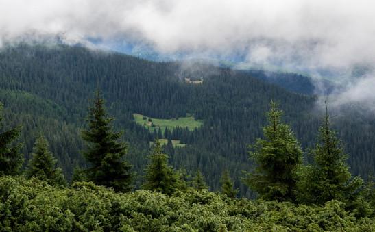Carpathians28.jpg