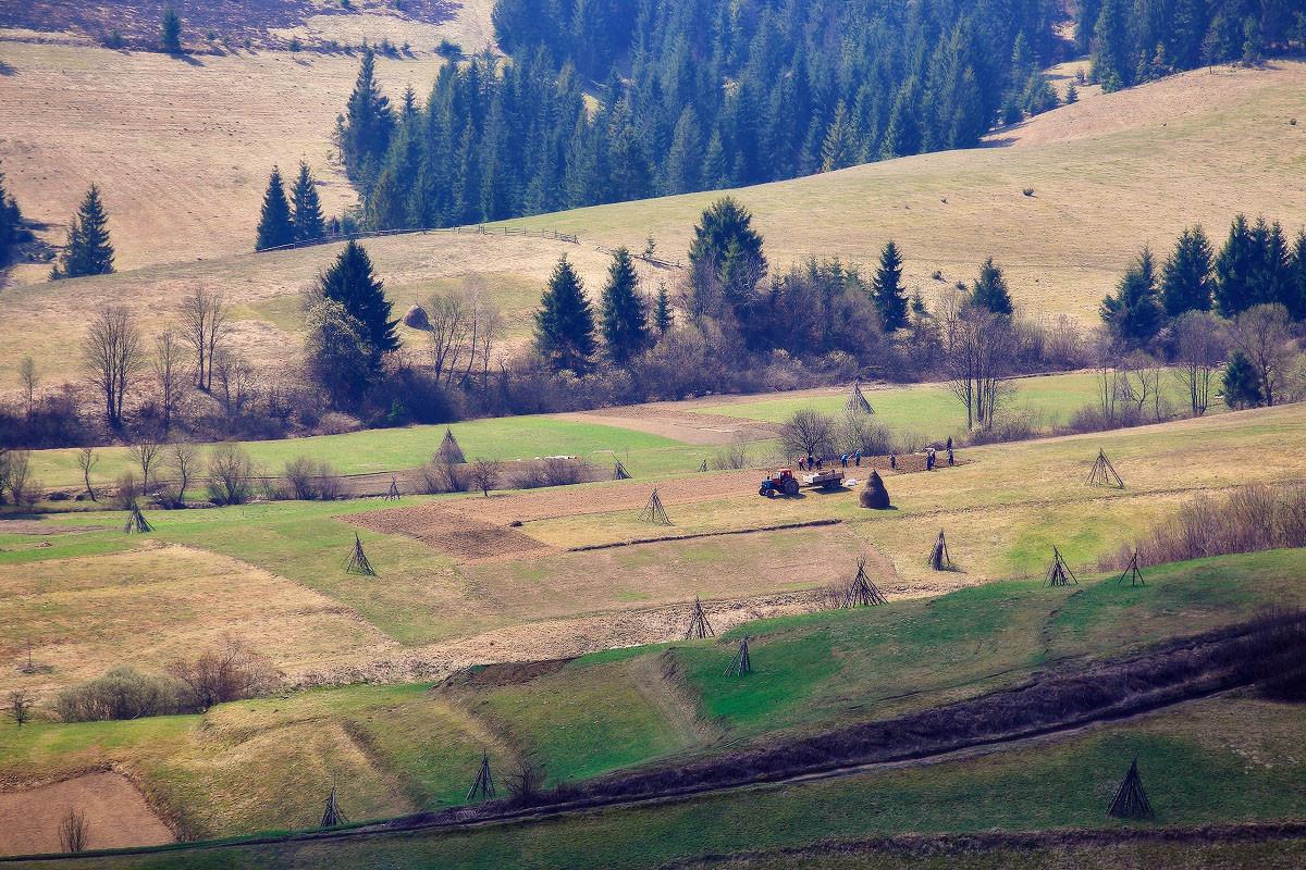 Carpathians47.jpg