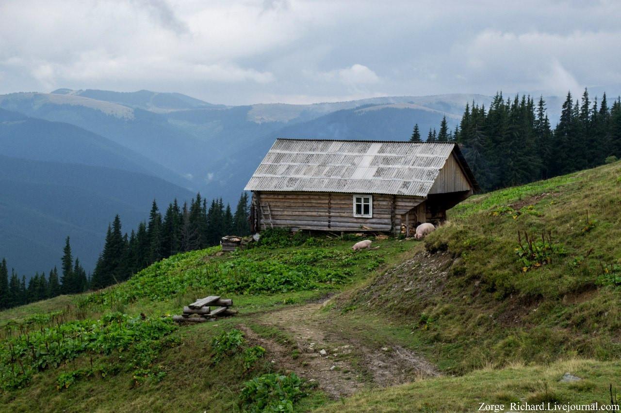 Carpathians31.jpg