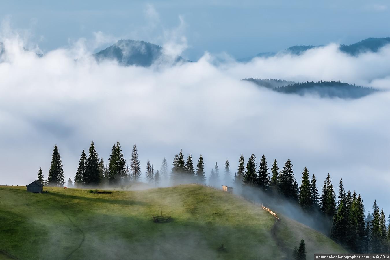 Carpathians36.jpg