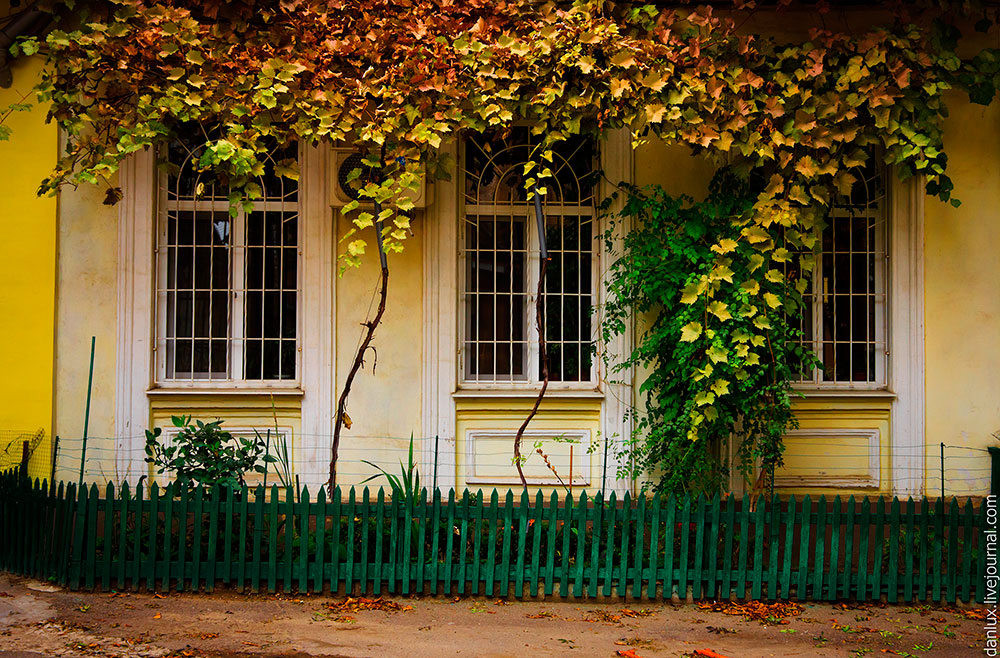 unique-odessa-patios-ukraine-12.jpg