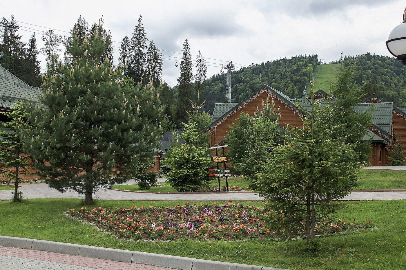 Carpathians41.jpg