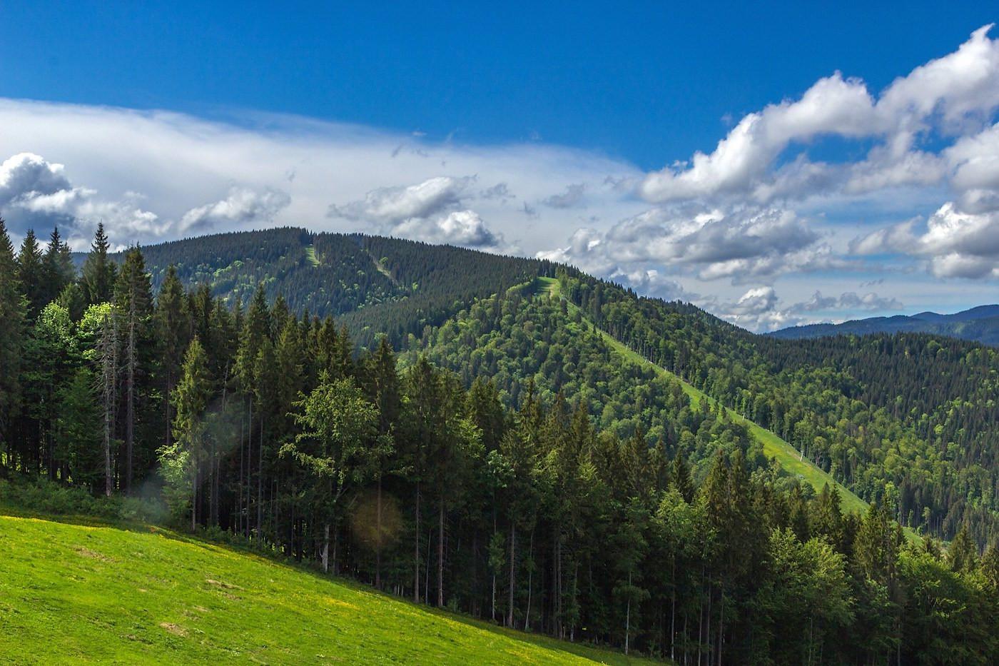 Carpathians45.jpg
