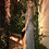 Thumbnail: Vestido beta gris oscuro