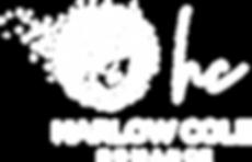 logo 03 white.png