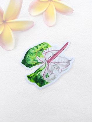 Sticker - Green Anthurium