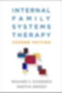 Internal Family systems therapy second e