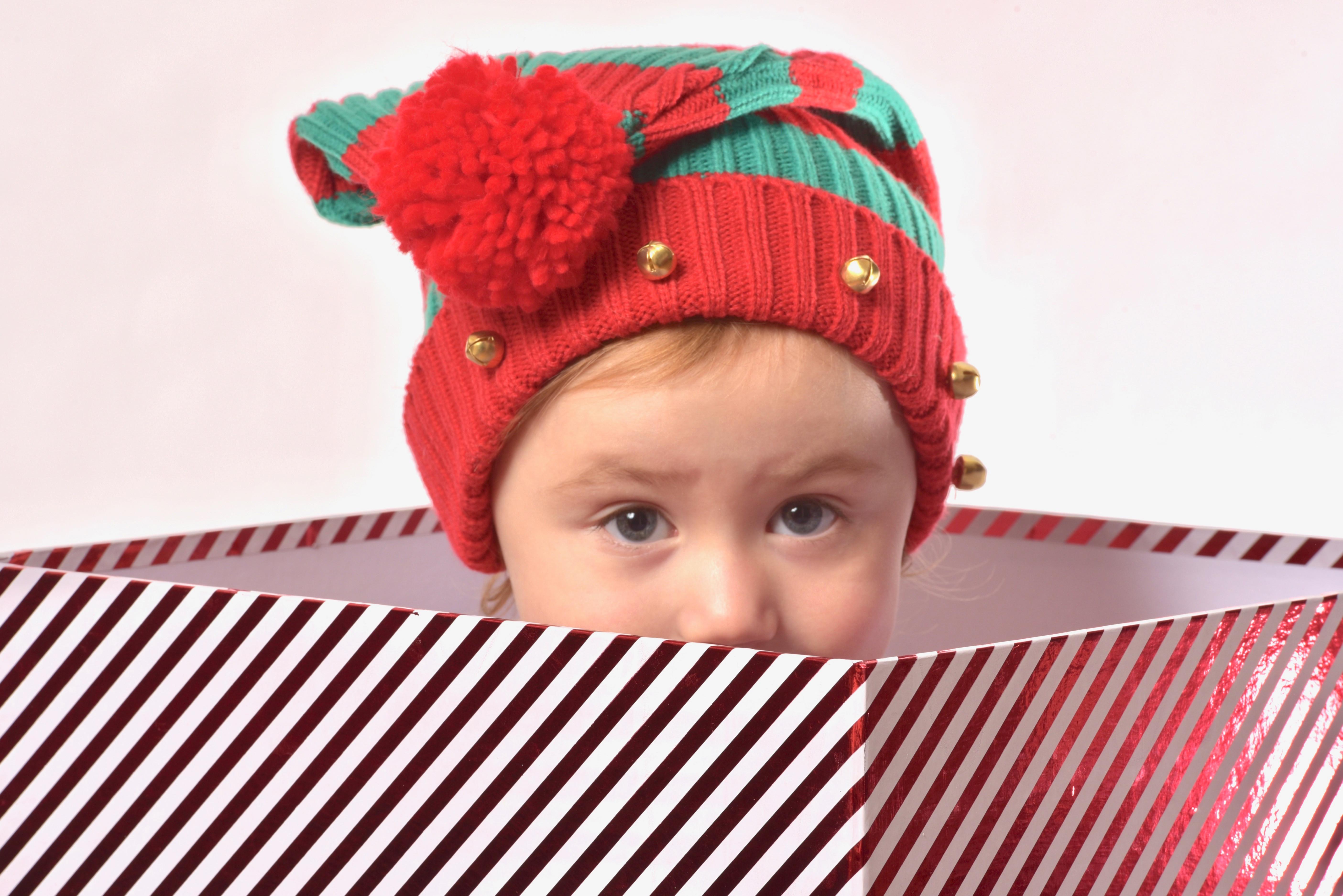 Christmas Mini's Photoshoot